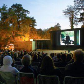 Coronasommer 2021: Inselbühne auf der Freundschaftinsel!